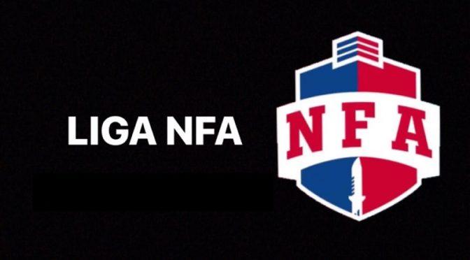 Conheça a NFA, Liga que auxilia jogadores brasileiros de Free Fire